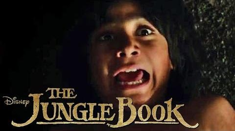 THE JUNGLE BOOK - Entspann Dich - Ab 14.04