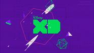 DXD bumper 2017 purple