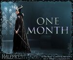 Maleficent Home Media One Month Promotion