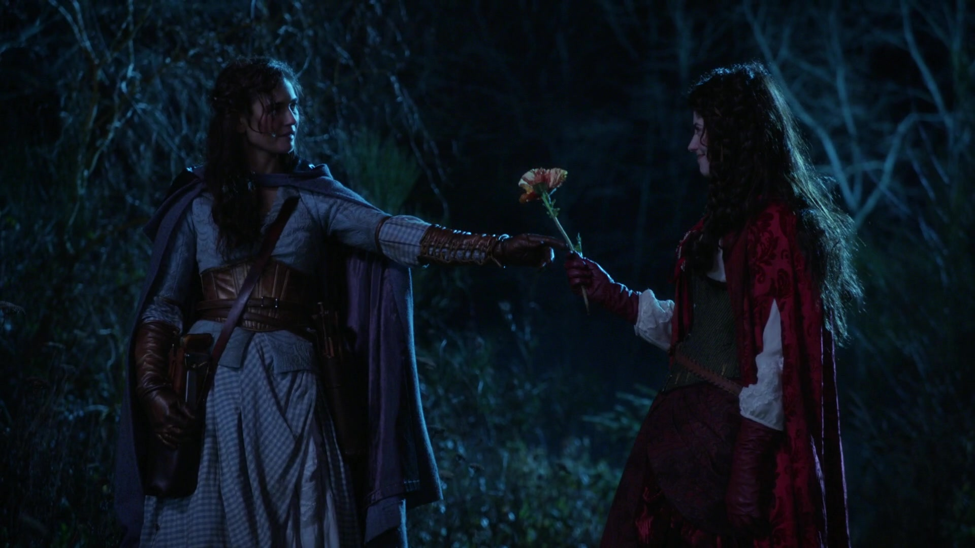 Ruby Slippers (Once Upon a Time)