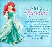 Ariel-disney-princess-33526864-441-397