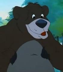 McCoy the Bear