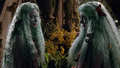 Once Upon a Time - 7x19 - Flower Child - Flora and Gothel