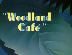 Ss-woodlandcafe.jpg