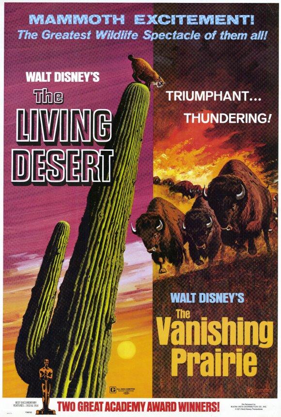 O Drama do Deserto