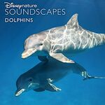Disneynature Soundscapes Dolphins
