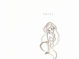 Ariel/Galería