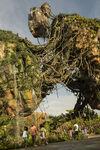 Pandora Landscape 04