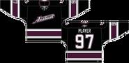 Mighty Ducks alternate jersey 2003