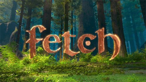 Fetch (Short Circuit)