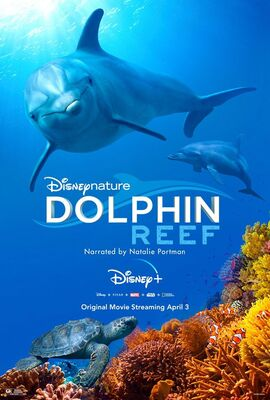 Dolphin Reef - Poster.jpg