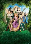 Tangled Textless Poster 1