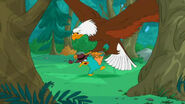 Agent E picks up Perry