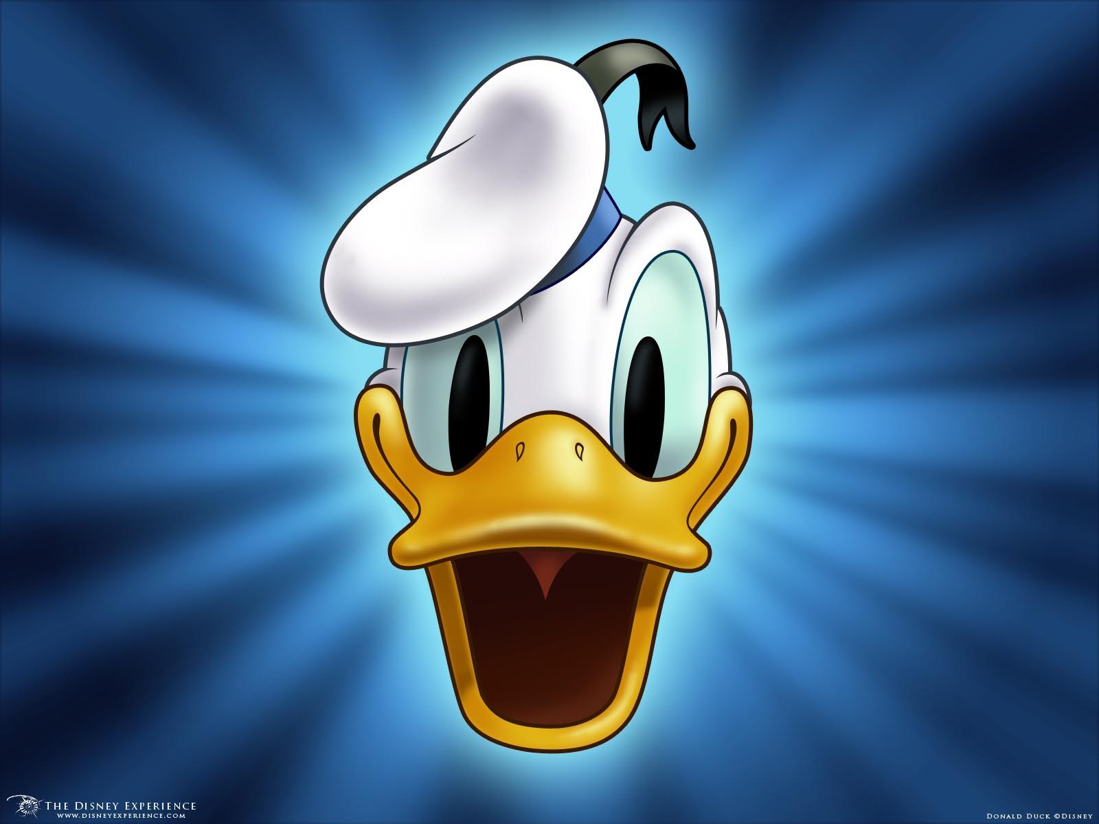 Donald Duck (canção)