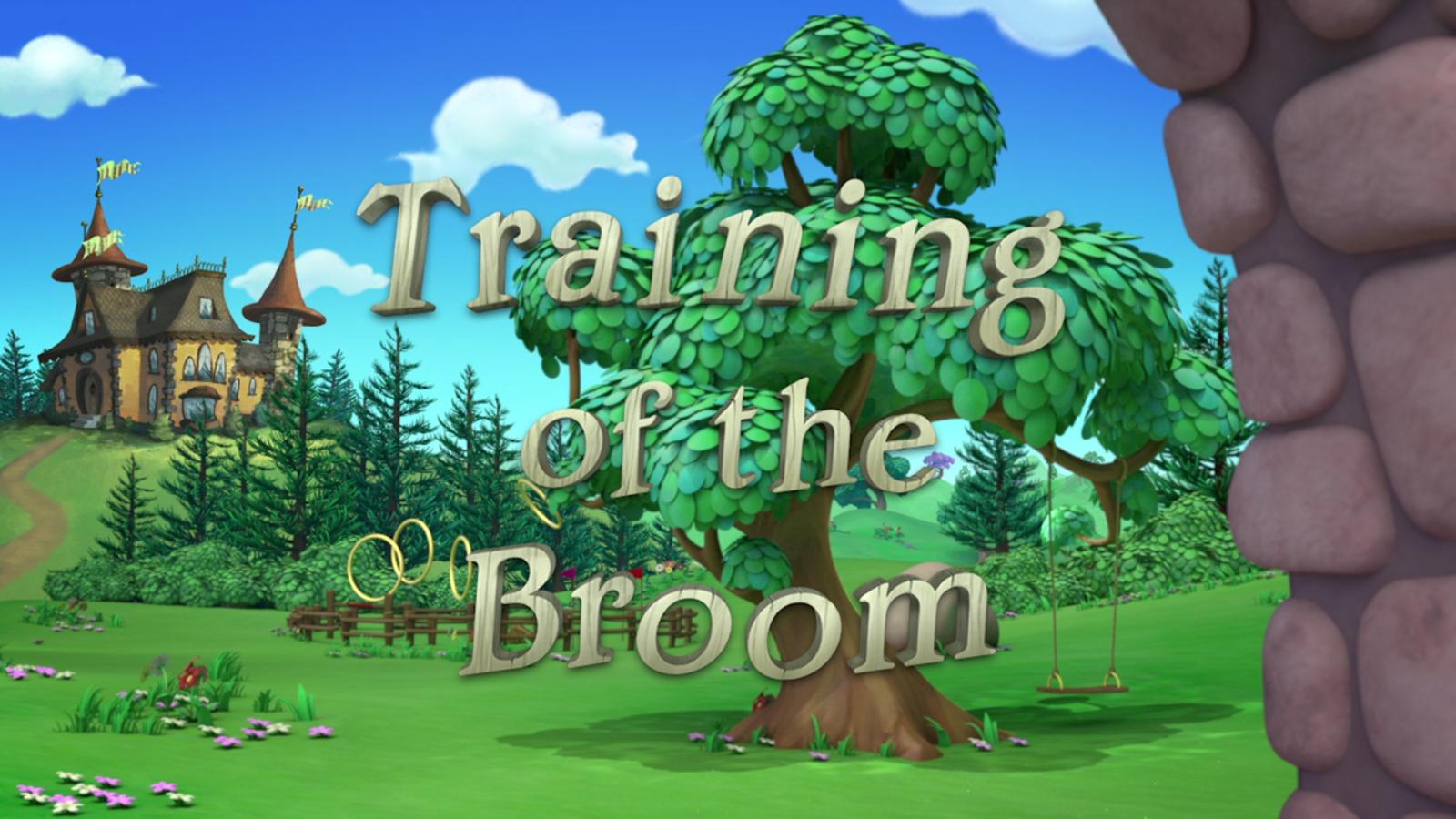 Training of the Broom