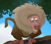 Baboon Leader