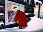 Bearly Asleep5