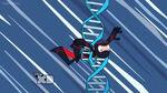 WonkinfortheWeekend DNA