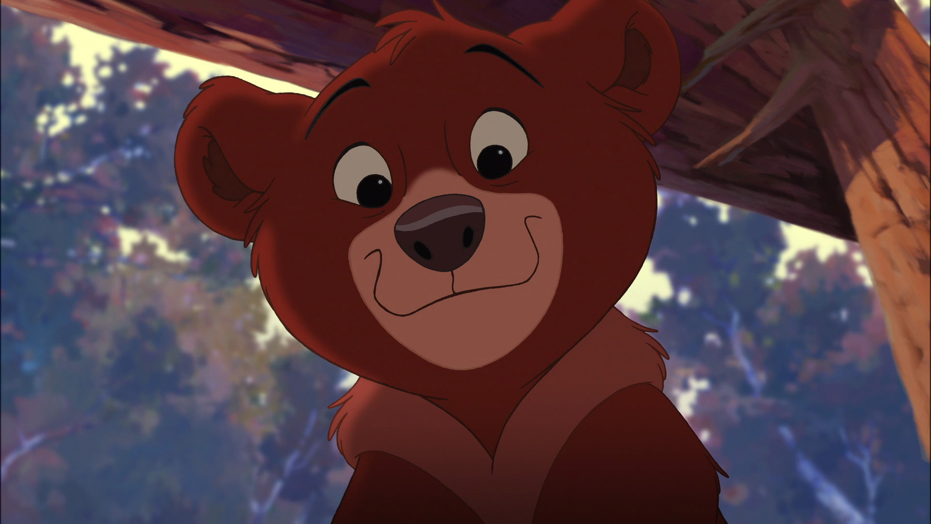 Dansk full bjørne brødre movie Disneys Bjørne