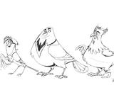 Freebird/Gallery