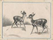 Bambi and Faline Concept Art by Marc Davis