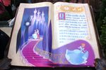 Fairy Tale Forest Storybook 04