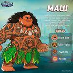Maui DHBM Promo