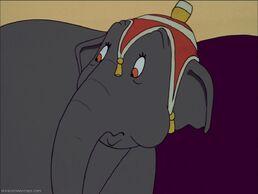 Elephant Giddy.jpg