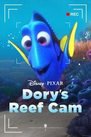 Dory's Reef Cam.jpg