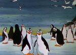 Peculiar penguins 2