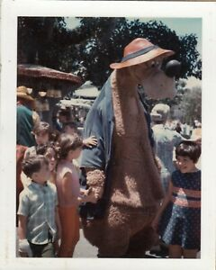 Br'er Bear Costumes Through the Years