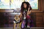 Descendants 3 - Photography - Dude and Celia
