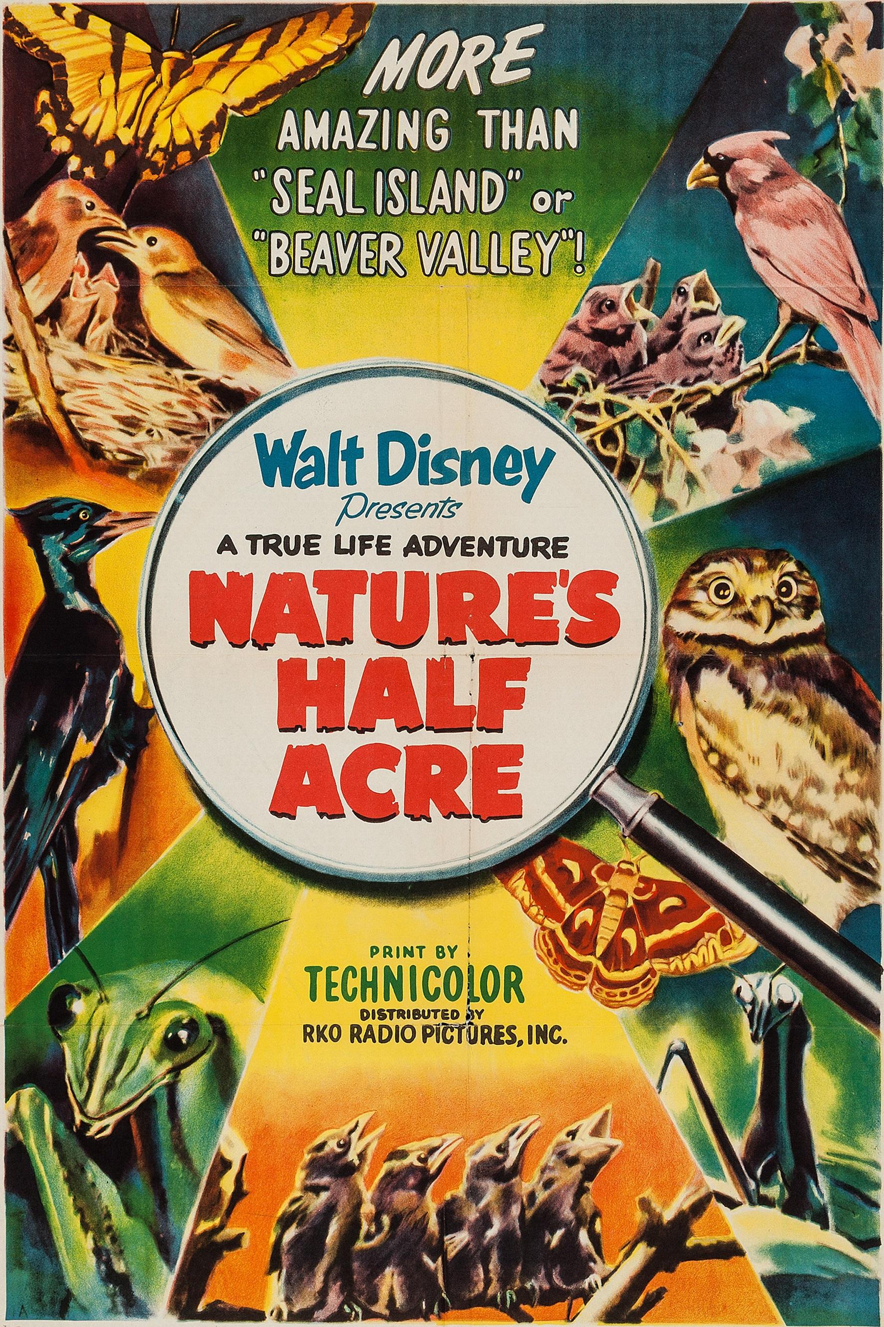Nature's Half Acre