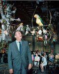 Walt-Disney-in-Tiki-Room