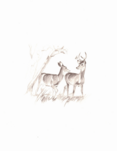 Bambi sketchbook 055