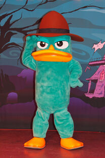 Perry in Park Form