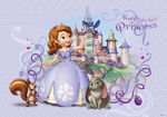 Sofia the First Ready to Be a Princess Wallpaper