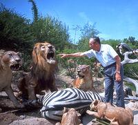Walt-in-Jungle-2-