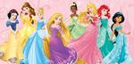 2014 Disney Princess Redesign