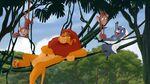 Simba-Bunga relaxing