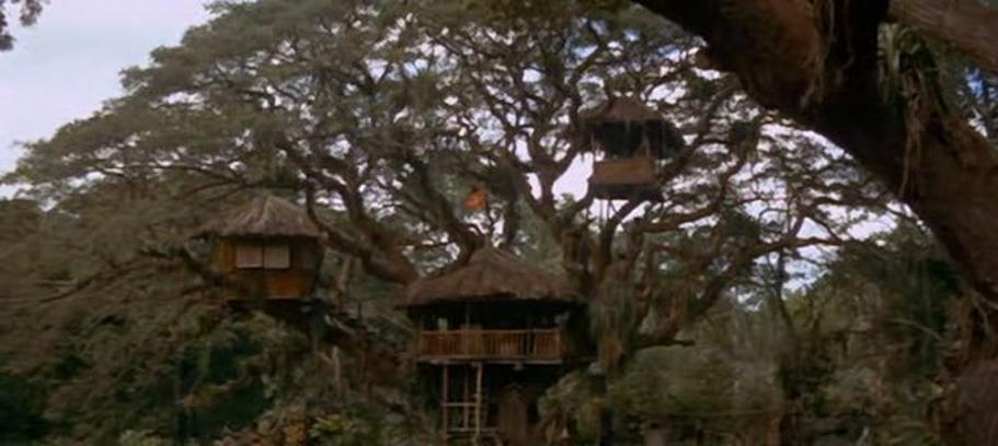 Swiss Family Treehouse (Swiss Family Robinson)