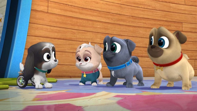Welcome to Puppy Playcare!