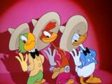 The Three Caballeros (song)