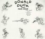 Donald model sheet