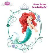 Ariel Redesign 13