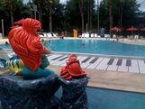 Music-piano-pool