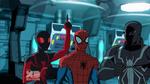 Spider-Woman5