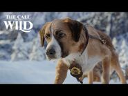 The Call of the Wild - New Lead Dog Clip - 20th Century Studios