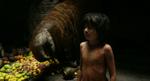 The Jungle Book 2016 (film) 11