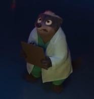 الطبيبة بادجر